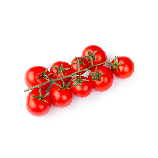 pomodorini pachino