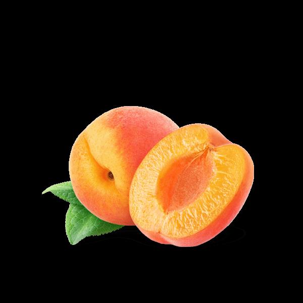 Albicocca Italiana