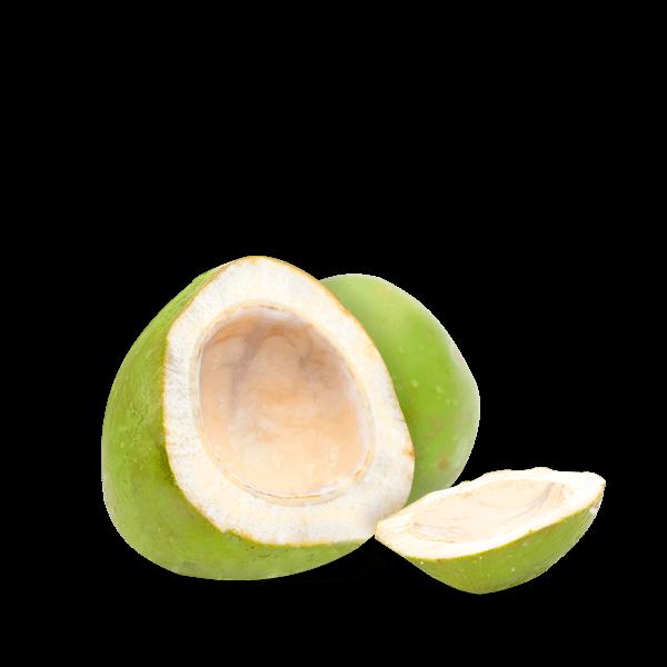 Cocco Verde