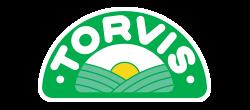 Torvis
