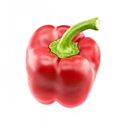 peperoni rossi